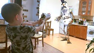 Nerf Game Snowman has come to the house Нерф Игра Снеговик против Богдана