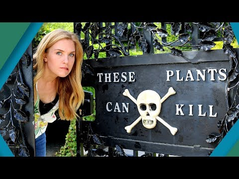 Deadliest Garden In The World | Earth Unplugged