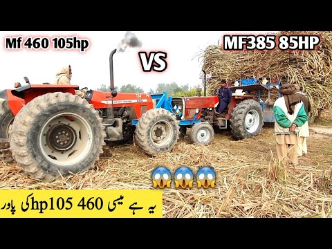 Mf 460 4x4 pushing a stuck sugarcane trolley |  two Mf 385 and Mf460 4x4 pulling out a loaded troly