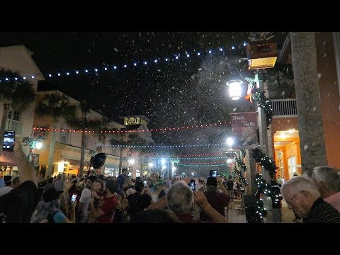 Now Snowing! Christmas Festivities in Celebration, Florida & Lowepro Backpack Reveal