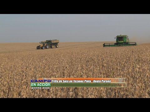 José Miguel Feser - Productor y contratista rural - Trilla de soja en Tezanos Pinto