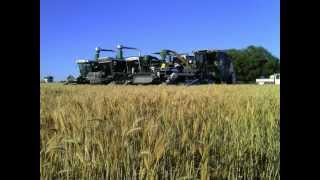 Trial Plot Harvest - New South Wales, Australia 2012