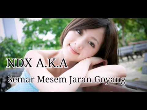 NDX A K A   jaran goyang.mp4 (HD) Mp3