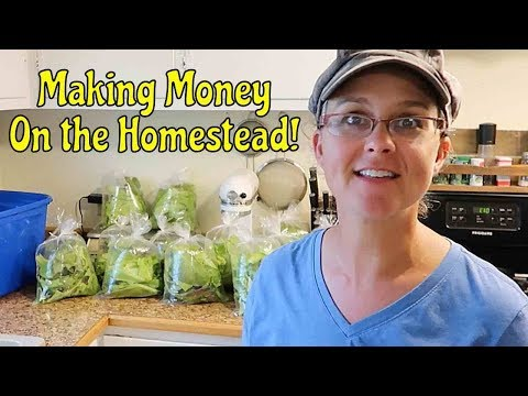 A GREAT SELLER at the Farmer's Market! Making Money on the