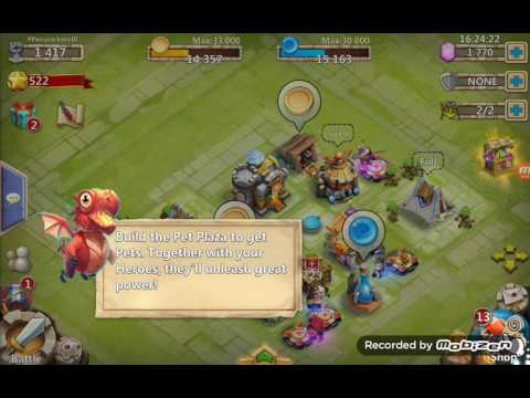 Castle Clash: Pet Plaza