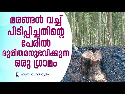 A village that is undergoing hardships for having planted trees | For the People EP 118 | Kaumudy TV