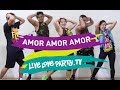 Amor Amor Amor | Live Love Party™ | Zumba® | Dance Fitness