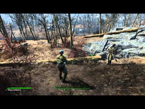 how to open the console in fallout 4
