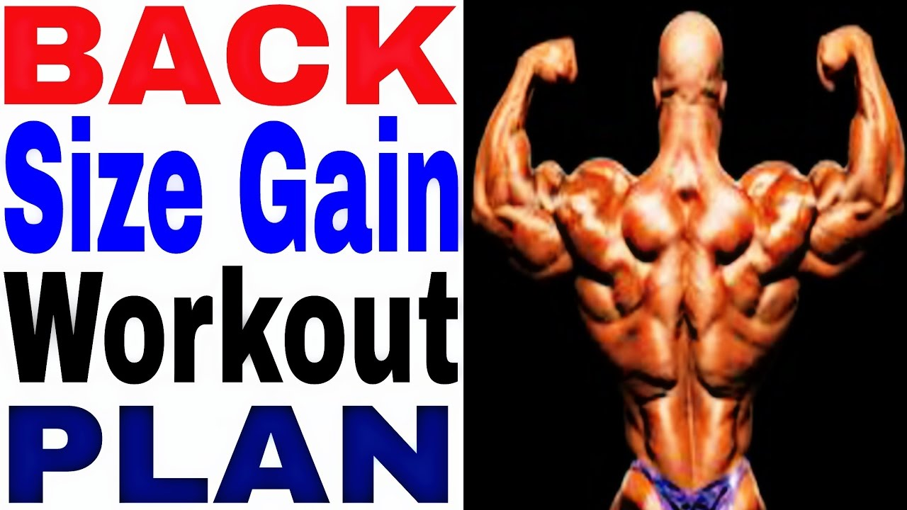 Back Size Gain Workout Plan Exercise And V Shape Cutting In Hindi India