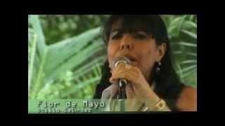 Flor de Mayo   Ynarhú