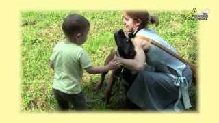 Дрессировка собак, воспитание щенка, социализация к человеку 1