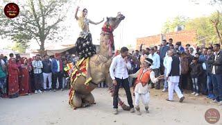 Shekhawati Camel Dance Performance | New Rajasthani Wedding Dance Video 2019 | Shekhawati Studio