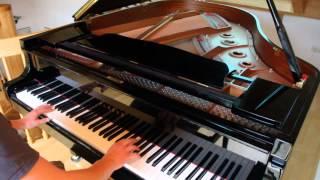 Avicii - Levels (Benedikt Waldheuer Piano Cover)