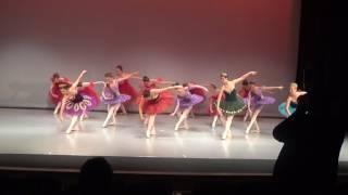Ballet Arts of Austin Spring Recital 2017 - Bows Dress R