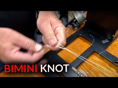 How To: Tie A Bimini Knot And Attach A Wind On Leader