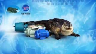 Phim quảng cáo TVC | Máy bơm nước Cá Sấu Vạn Phước | Viral video marketing