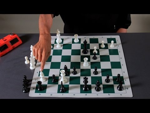 Capturing Pieces vs. Pursuing Checkmate | Chess
