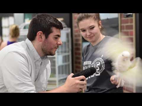 How I Made An Infinity Pool Bird Bath | Trowel & Error
