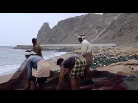 Fujairah Travel Video