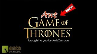 Ant Game of Thrones