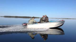 Рыбалка на таёжном озере Тенис Новосибирская область Васюганские болота