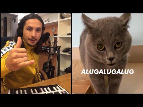 The Kiffness X Alugalug Cat 2.0 (Please Go Away)