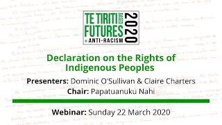 Declaration on the Rights of Indigenous Peoples webinar