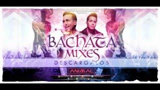 Bachata Mix 11 - Animal Dj (www.animaldj.co)