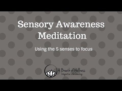 Sensory Awareness Meditation