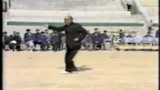 Shanxi Xingyi (2of2)