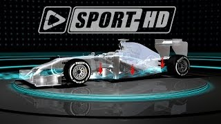 F1 Technik Nasen / Formula 1 Tech Noses