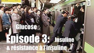 Obésité, surpoids, diabète, comprendre et agir n°3 - Tout sur l'insuline - www.regenere.org