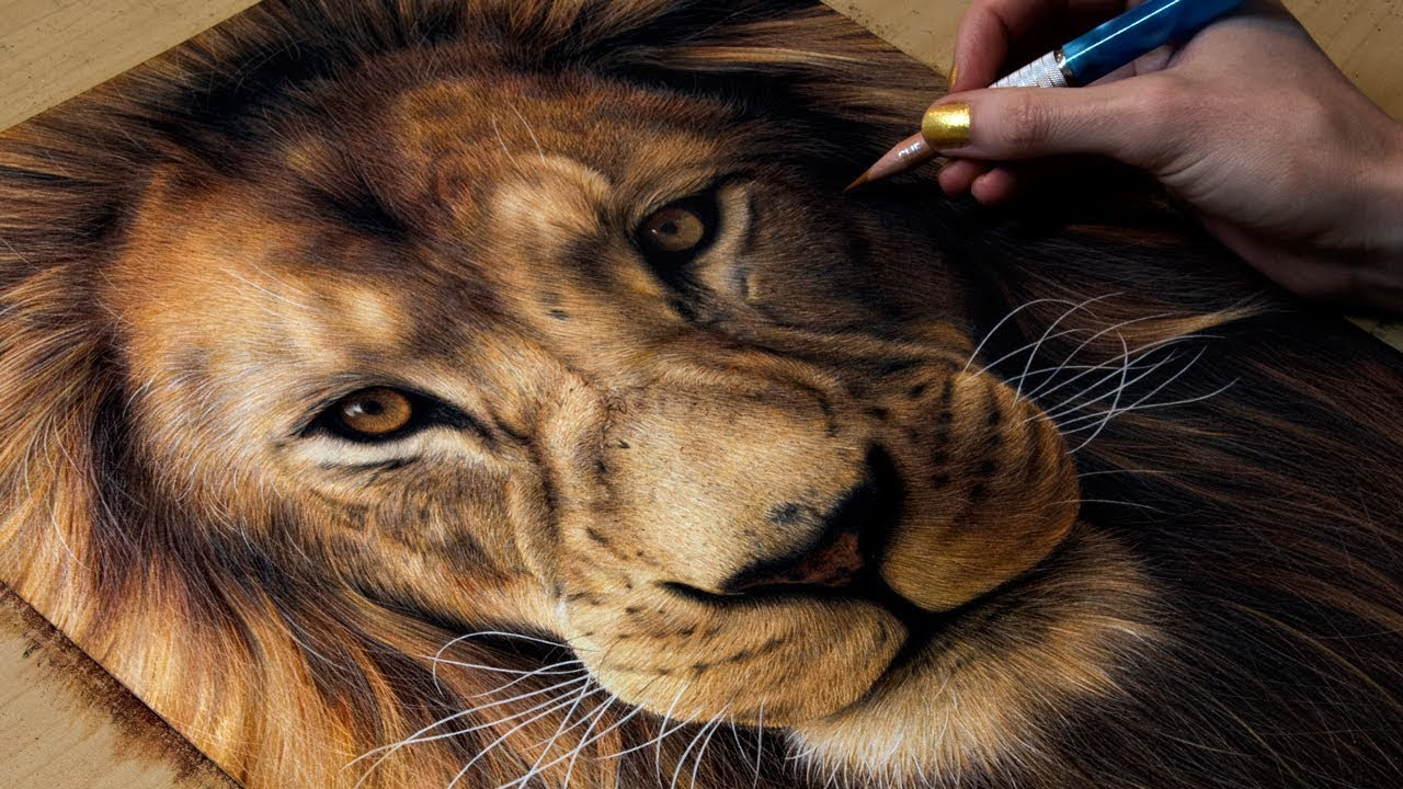 drawing a lion youtube