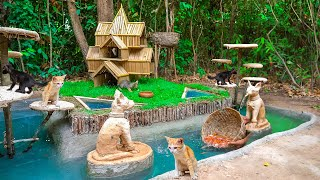 Rescue Abandoned Cat Building Bamboo Cat House And Fish Pond For Red Fish