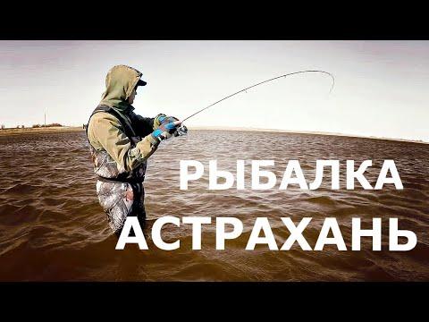 Поездка в Астрахань на РЫБАЛКУ. ЧТО взять с собой и СКОЛЬКО это стоит!?