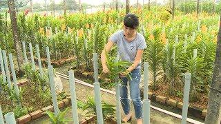 TP. Hồ Chí Minh tập trung phát triển doanh nghiệp và HTX nông nghiệp