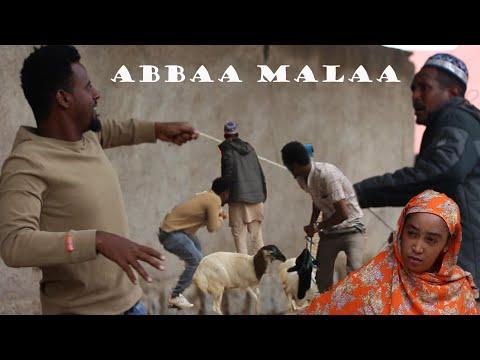 Abbaa Malaa -