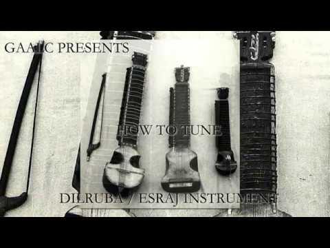 HOW TO TUNE DILRUBA / ESRAJ. LEARN DILRUBA / ESRAJ INSTRUMENT ONLINE.