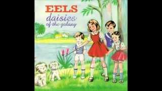 The Eels - Flyswatter