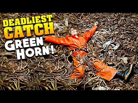 Greenhorns Get The FATTEST King Crabs - Deadliest Catch The Game