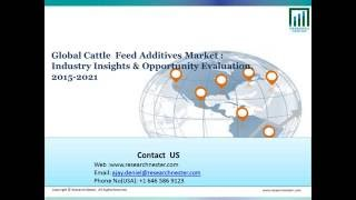 Cattle and Feed Additive Market