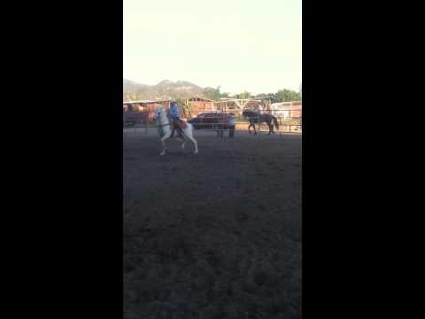 Daniel Benitez en su caballo el dolar