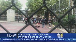 Teen Fatally Shot On Brooklyn Playground