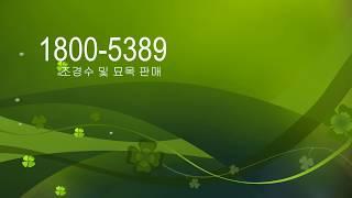 정원꾸미기 / 조경수/ 나무묘목/ 전원주택조경/정원수/…