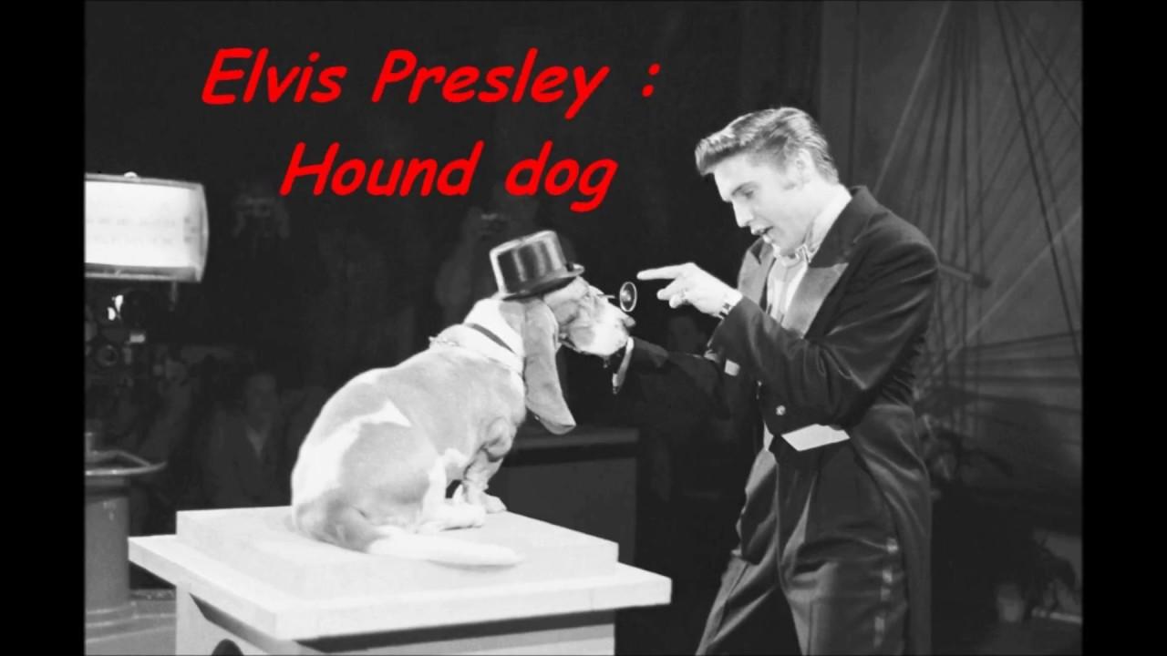hound dog elvis