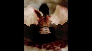 El Ángel Que Bajo A La Tierra
