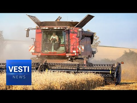 Record Russian Bumper Crop Breaks All Records and Threatens American Agriculture Giants
