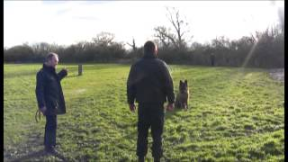 Donate Your Dogs To Cheshire Police