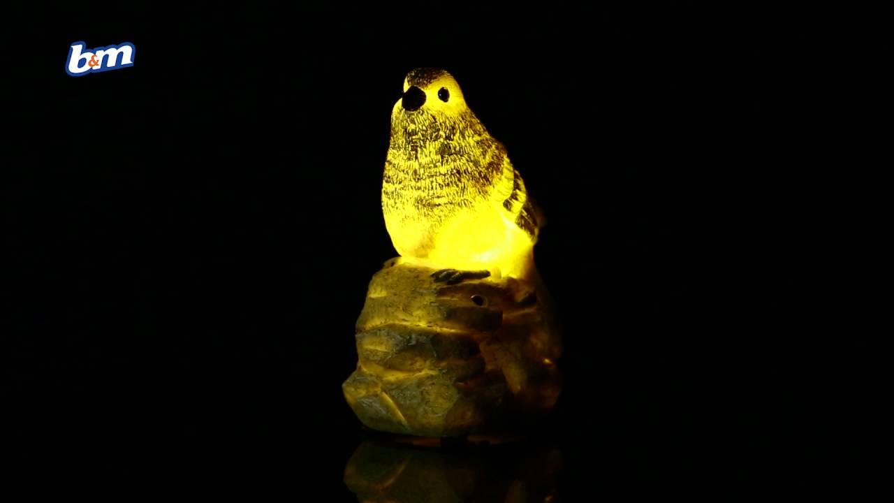 Light Up Solar Powered Tweeting Bird Garden Decoration