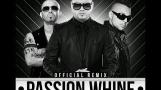 Farruko Ft Sean Paul Y Wisin - Passion Wine (Remix) (Letra)